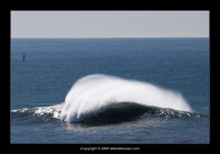 Mavericks - the famous wave discovered by Jeff Clarke