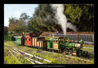 Southern California Live Steamers New Years 2013