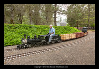14-06-03_tom_millers_railroad-8135.jpg
