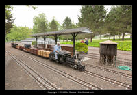 14-06-03_tom_millers_railroad-8149.jpg