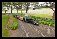 14-06-03_tom_millers_railroad-8156.jpg